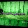 【Fallout4】グリーントップ菜園からの依頼。レイダー掃討作戦〜激強な刀発見!?
